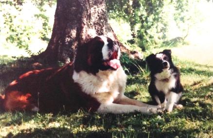 5.8.1996 Tutustuin Benny-poikaan.