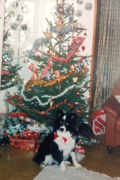 Ensimmäinen jouluni!