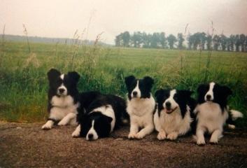 Tanskan jengi: Minä Pepe, Mette, Whizz, Jimmy ja Phanton
