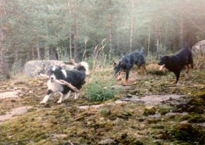 Dali ja Degas kylässä syyskuussa 1997