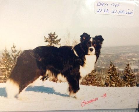 1.2.1998 Laajavuoren huipulla!