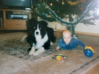 Joulu 2001 Toto vahtii Niklasta.