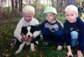 Me pikku-pojat kesä 2004