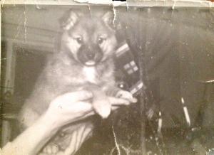 1970 -luku Lapsuuteni mummolassa